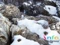 www.zlatemoravce.info