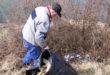 Čistenie brehov našich potokov