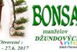 20. ročník výstavy BONSAI manželov Džundových