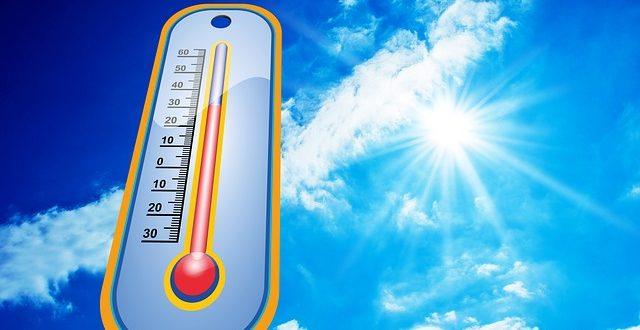 Na čo majú zamestnanci nárok počas horúčav?